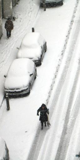 neige-gre-24-02-9