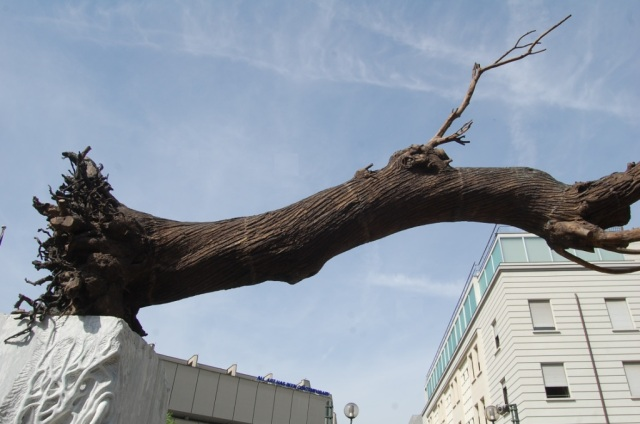Turin - arbre de Penone