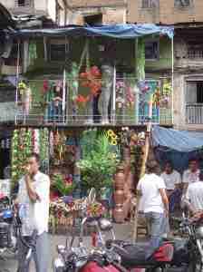 fleurs-Kathmandu